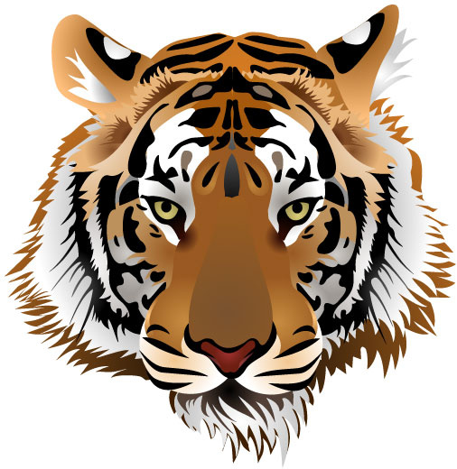506x520 Set Of Tiger Vector Picture Art Free Vector In Encapsulated