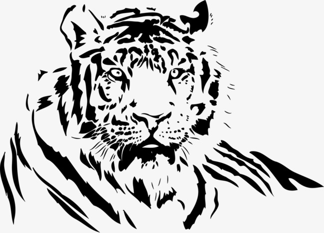 650x468 Tiger Lines, Black And White, Big Tiger, Vector Artwork Png And