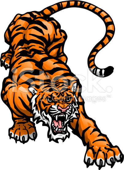 404x556 Tiger Vector 11 An Images Hub
