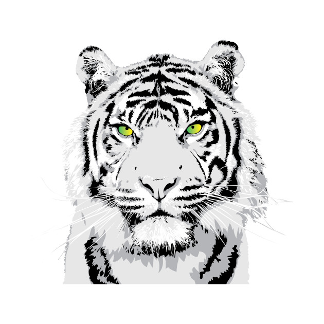 Tiger Vector Art at GetDrawings com | Free for personal use