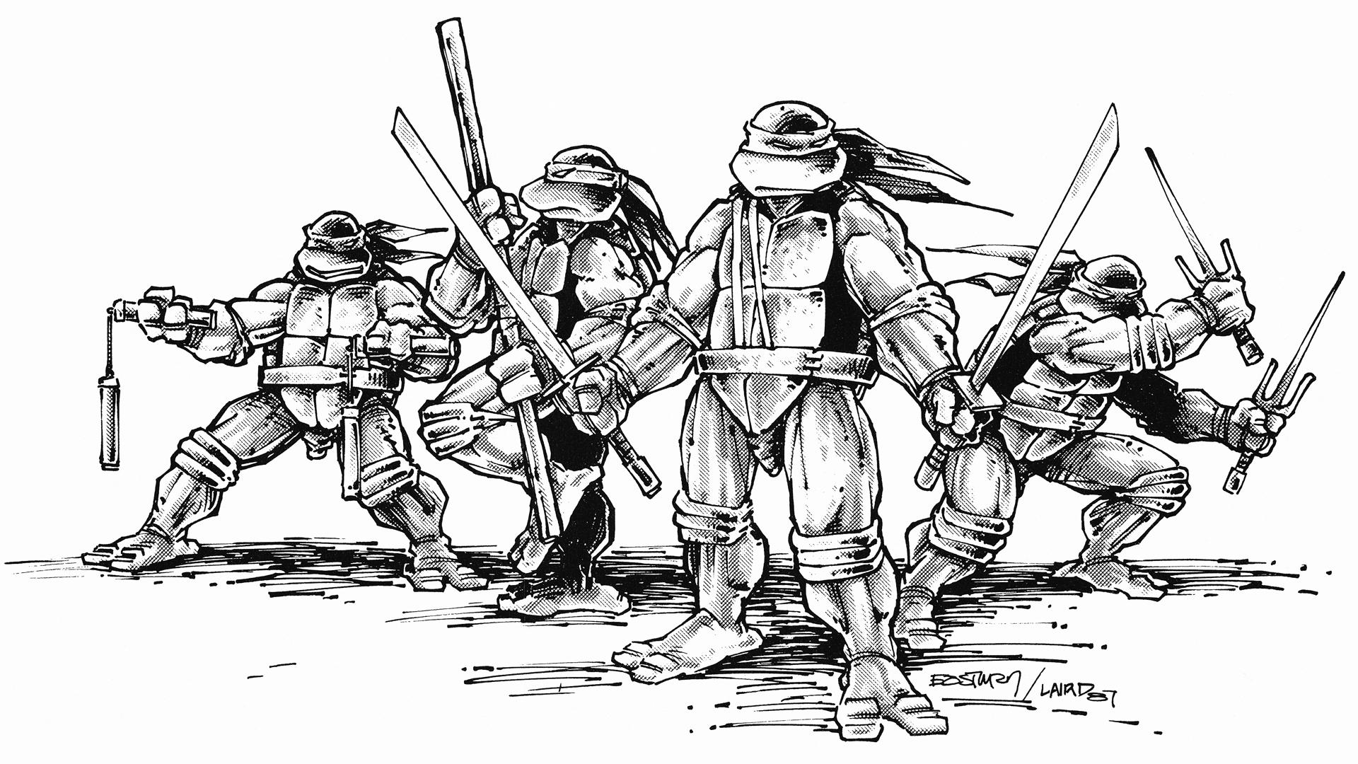 1920x1080 Teenage Mutant Ninja Turtles Zoom Comics