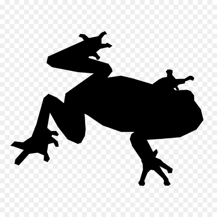 900x900 Frog Computer Icons Toad Control Key