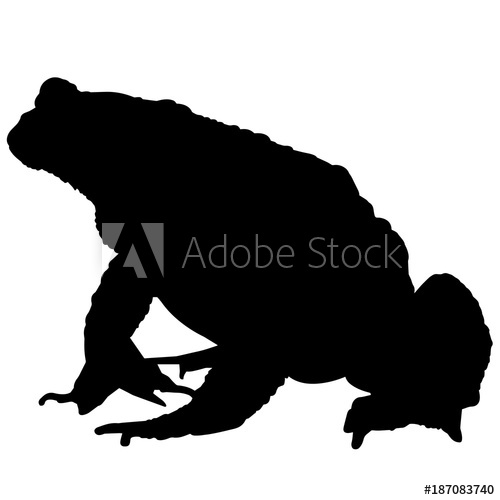 500x500 Toad Silhouette Vector Graphics