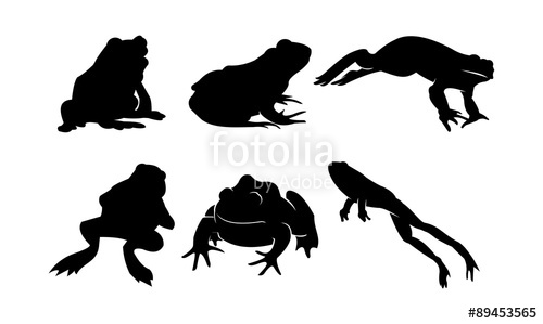 500x299 Vector Silhouette Of Frog And Toad In Bundle Stock Image And