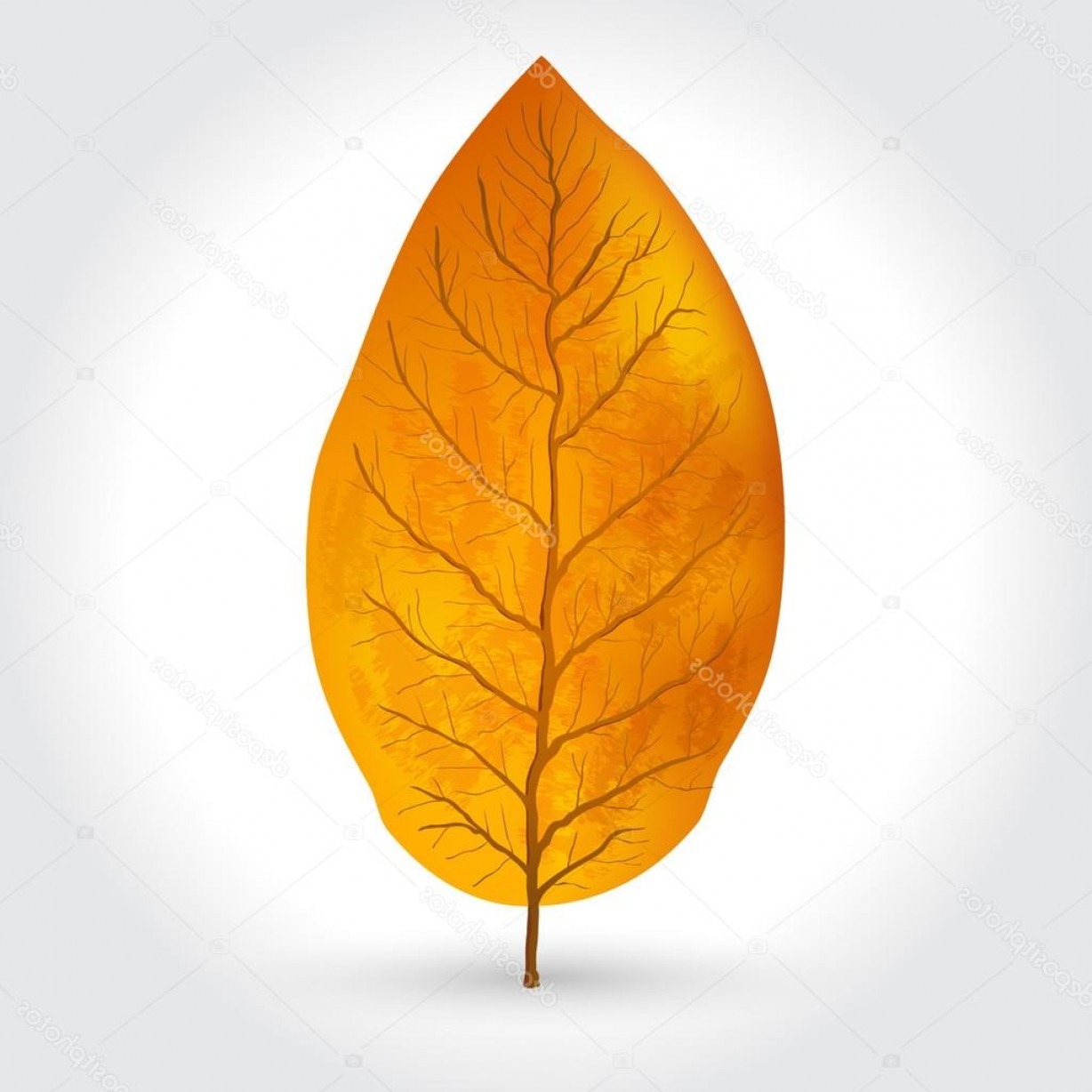 1228x1228 Stock Illustration Tobacco Leaves Vector Illustration Geekchicpro