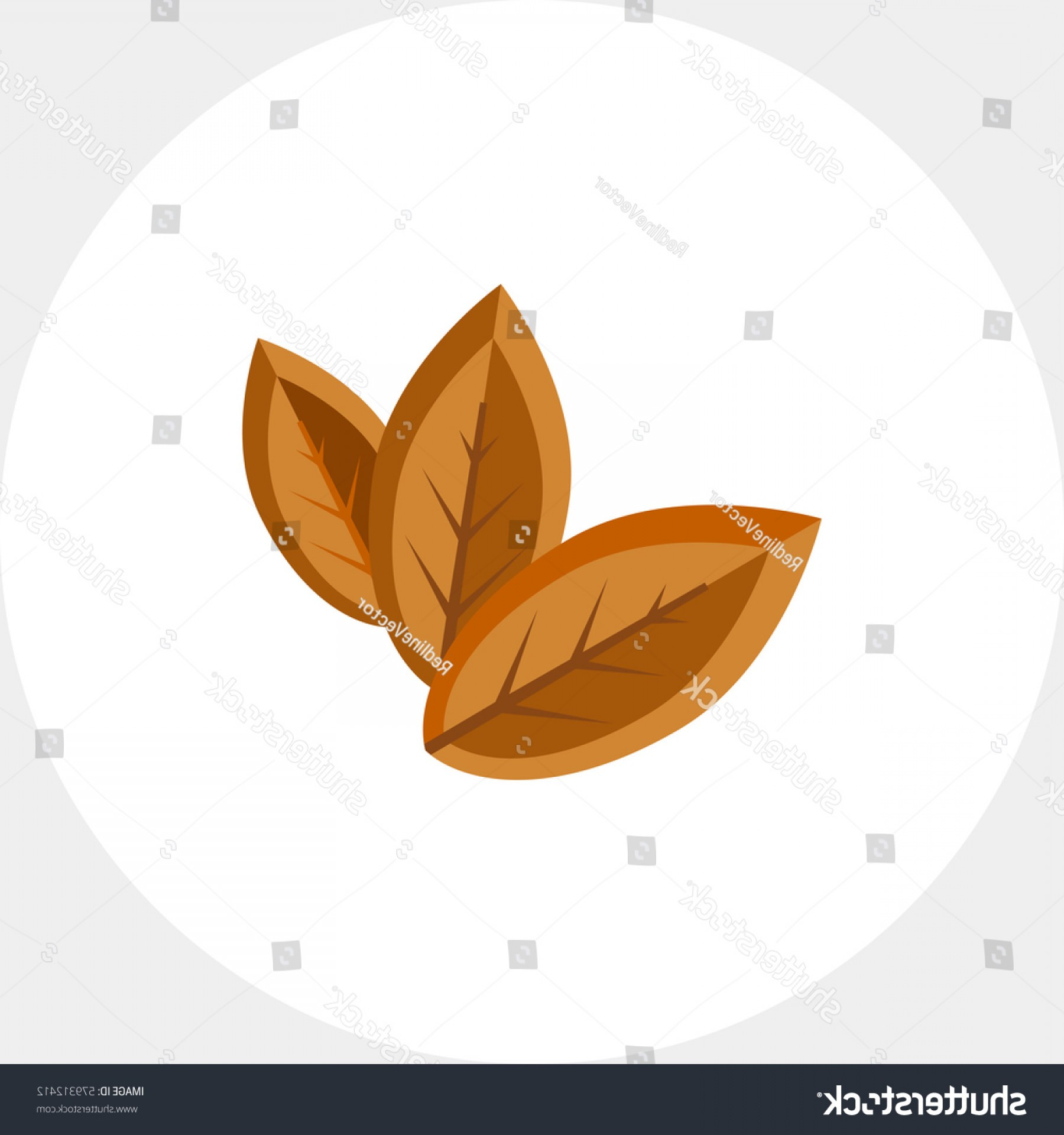 1800x1920 Three Dry Tobacco Leaves Icon Lazttweet