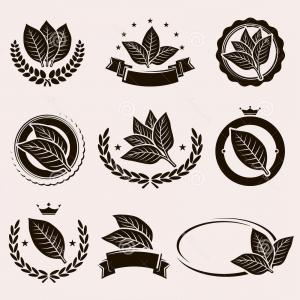 300x300 Tobacco Leaf Label And Icons Set Vector Illustration Arenawp