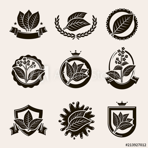 500x500 Tobacco Leaf Label And Icons Set. Vector