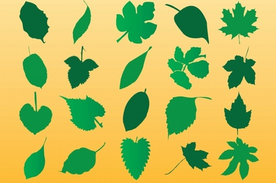 555x368 Tobacco Leaf Silhouette Free Vector Download (8,990 Free Vector