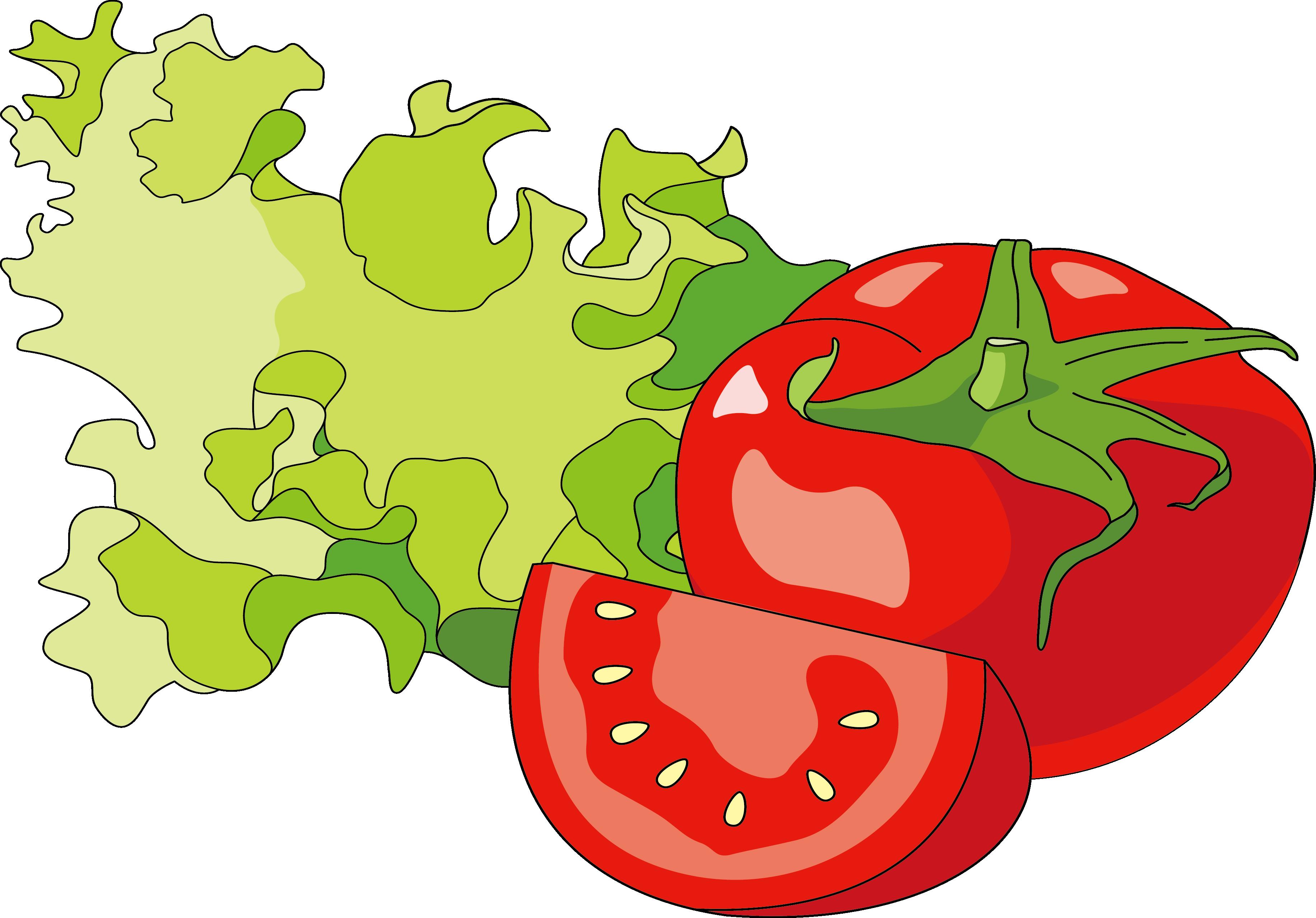 3668x2560 Hot Dog Hamburger Tomato Illustration