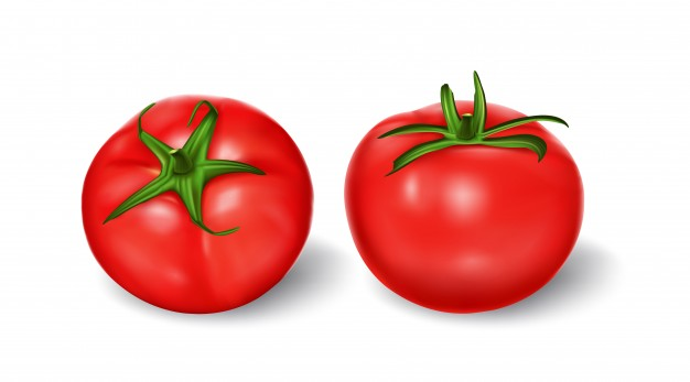 626x347 Tomato Vectors, Photos And Psd Files Free Download
