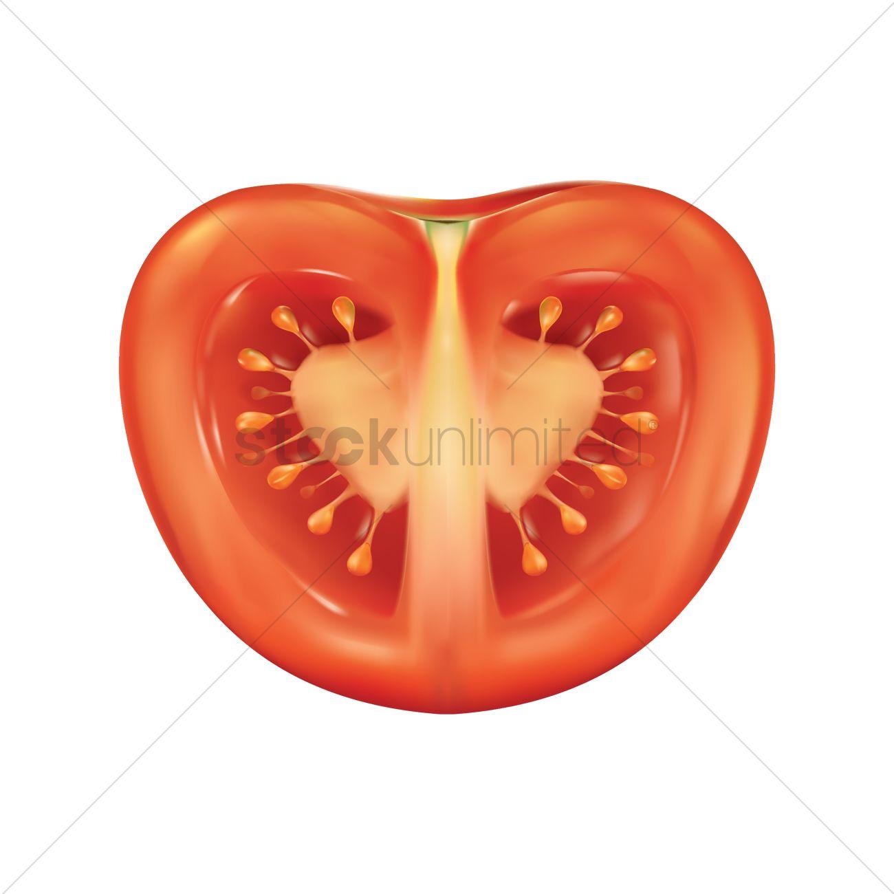 1300x1300 Tomato Slice Vector Image