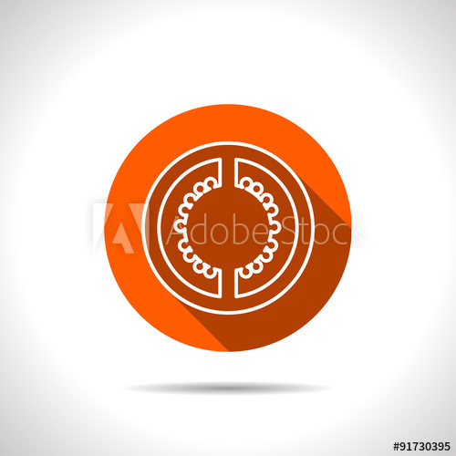 500x500 Vector Tomato Slice Orange Icon With Flat Shadow