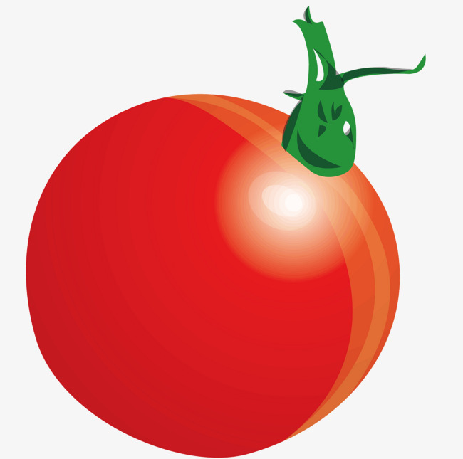 650x645 A Tomatoes, Vector Diagram, Tomato, Tomato Png And Vector For Free