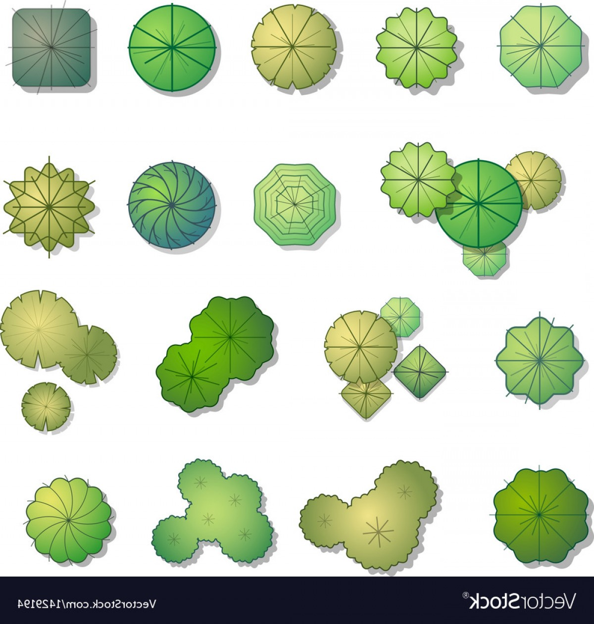 Top View Tree Vector at GetDrawings com | Free for personal