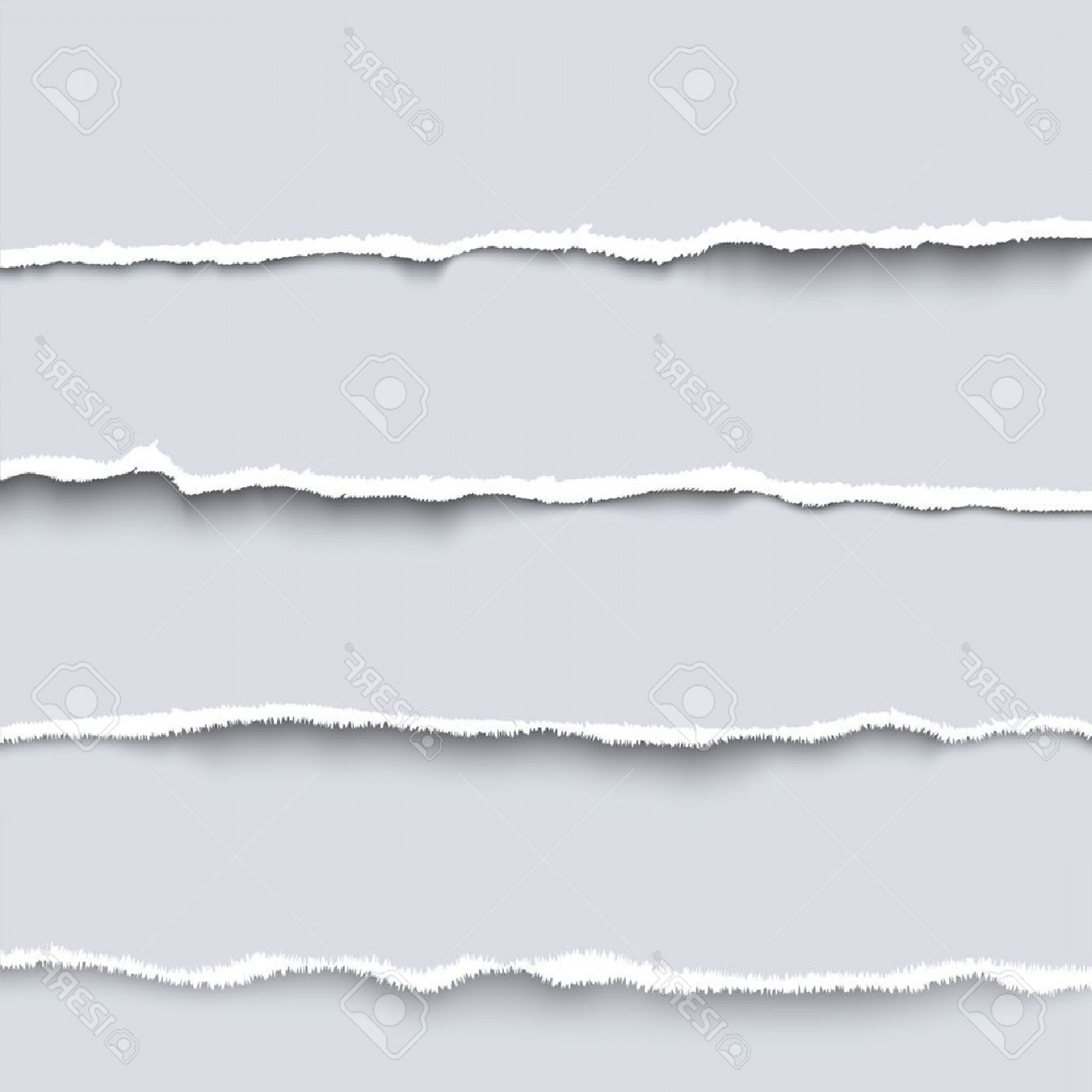 1560x1560 Photostock Vector Vector Torn Paper Collection Of Four White