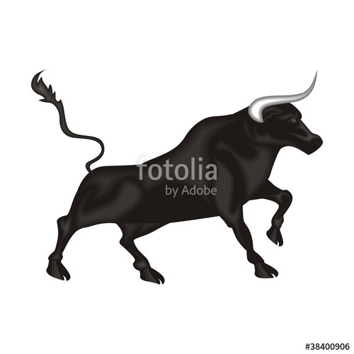 500x500 Toro Stock Image And Royalty Free Vector Files On