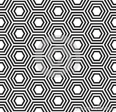 400x386 Tortoise Shell Vector