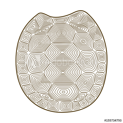 500x500 Carapace Turtle Zen Tangle. Coloring Book With Shell Tortoise