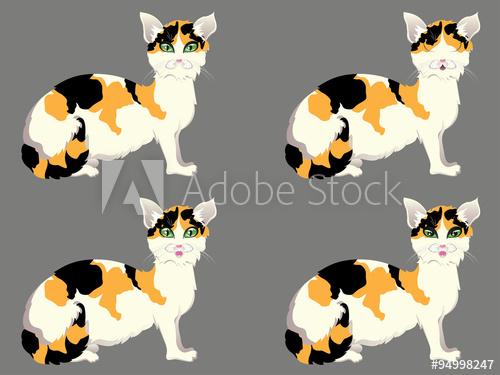 500x375 Tortoiseshell Cat With Green Eyes