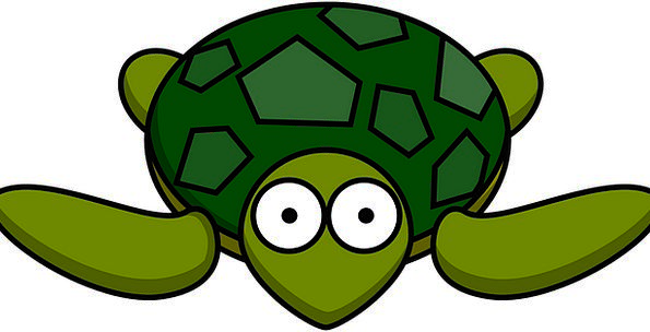 595x304 Turtle, Lime, Shell, Bomb, Green, Tortoise, Animal, Reptile, Cute