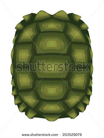 354x470 Turtle Shell Pattern Wallpaper