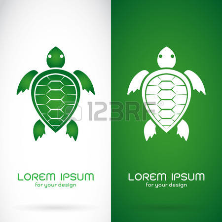 450x450 Turtle Shell Logo Clipart