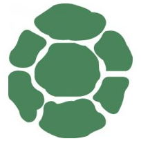 204x204 Turtle Shell Pattern Clipart Collection