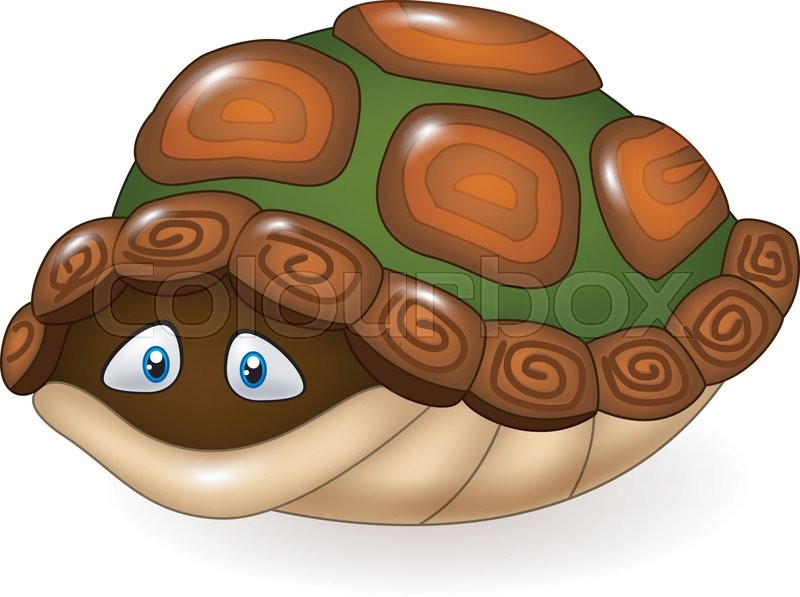 800x597 Vector Illustration Of Cartoon Funny Turtle Hides In Its Shell