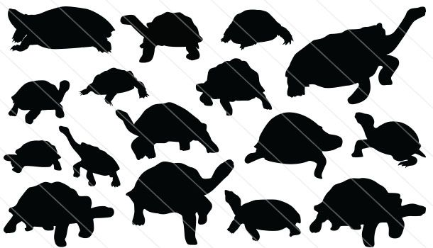 610x350 Tortoise Silhouette Vector (16) Tortoises And Turtles