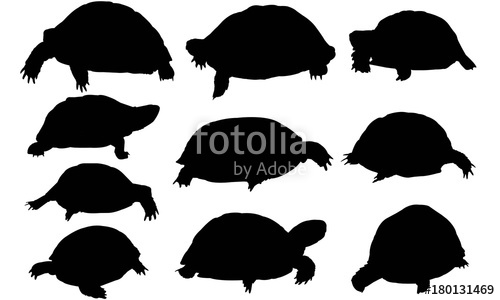 500x300 Tortoise Silhouette Vector Graphics Stock Image And Royalty Free