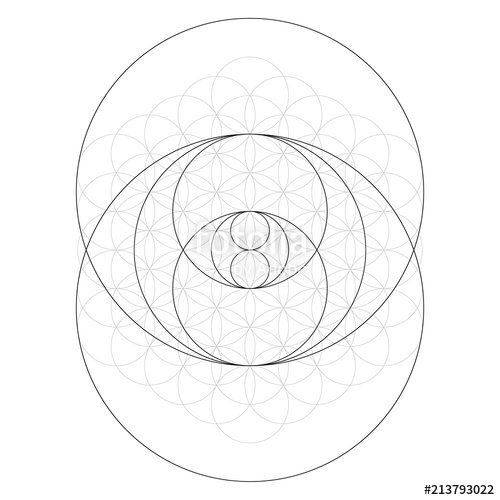 500x500 Geometrical Figure. Sacred Geometry Torus Yantra Or Hypnotic Eye