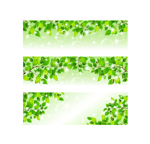 500x480 Bubble And Tree Leaves Vector Background 02 Free Download
