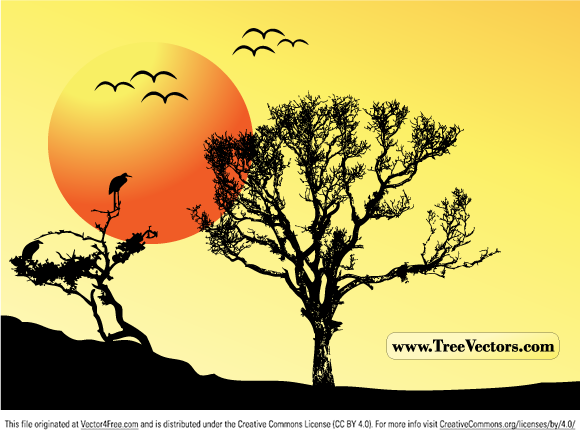 580x438 Free Sunset Vector Tree Background Psd Files, Vectors Amp Graphics
