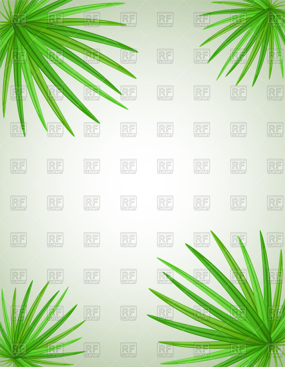 933x1200 Palm Tree Leaves Background Vector Image Vector Artwork Of