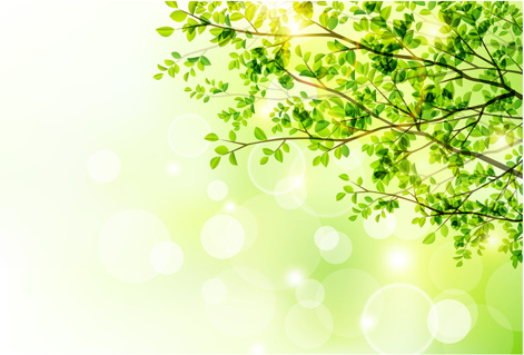 471x319 Sunlight With Green Tree Spring Background Png Images, Backgrounds