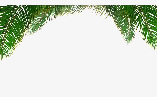 650x400 Vector Palm Tree Background, Tree Clipart, Background Clipart
