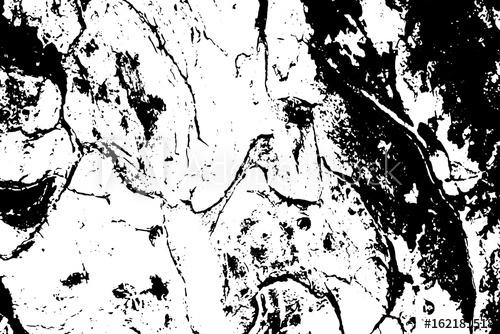 500x334 Grungy Tree Bark Vector Texture. Black And White Bark Ornament