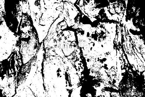 500x334 Obsolete Tree Bark Vector Texture. Black And White Bark Ornament
