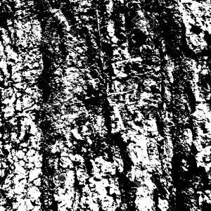 300x300 Photostock Vector Weathered Tree Bark Surface Wood Bark Texture