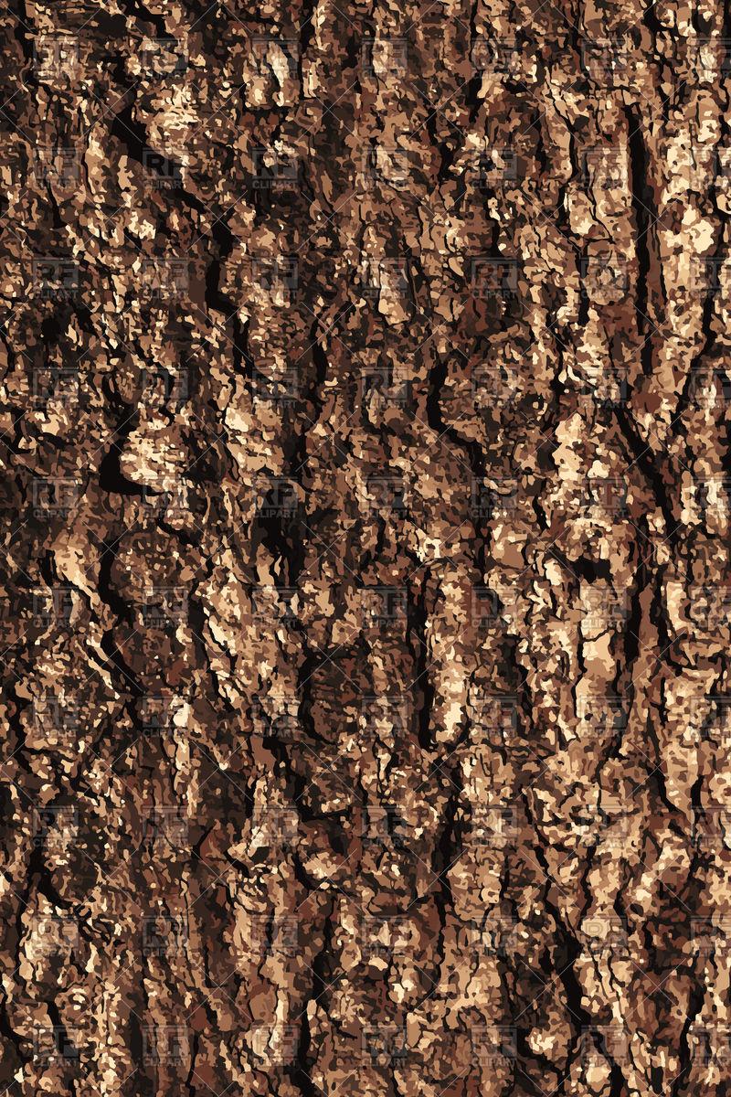 800x1200 Pine Bark Texture Pattern Vector Image Vector Artwork Of