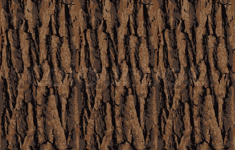 800x509 Seamless Tree Bark Texture. Endless Wooden Background For Web