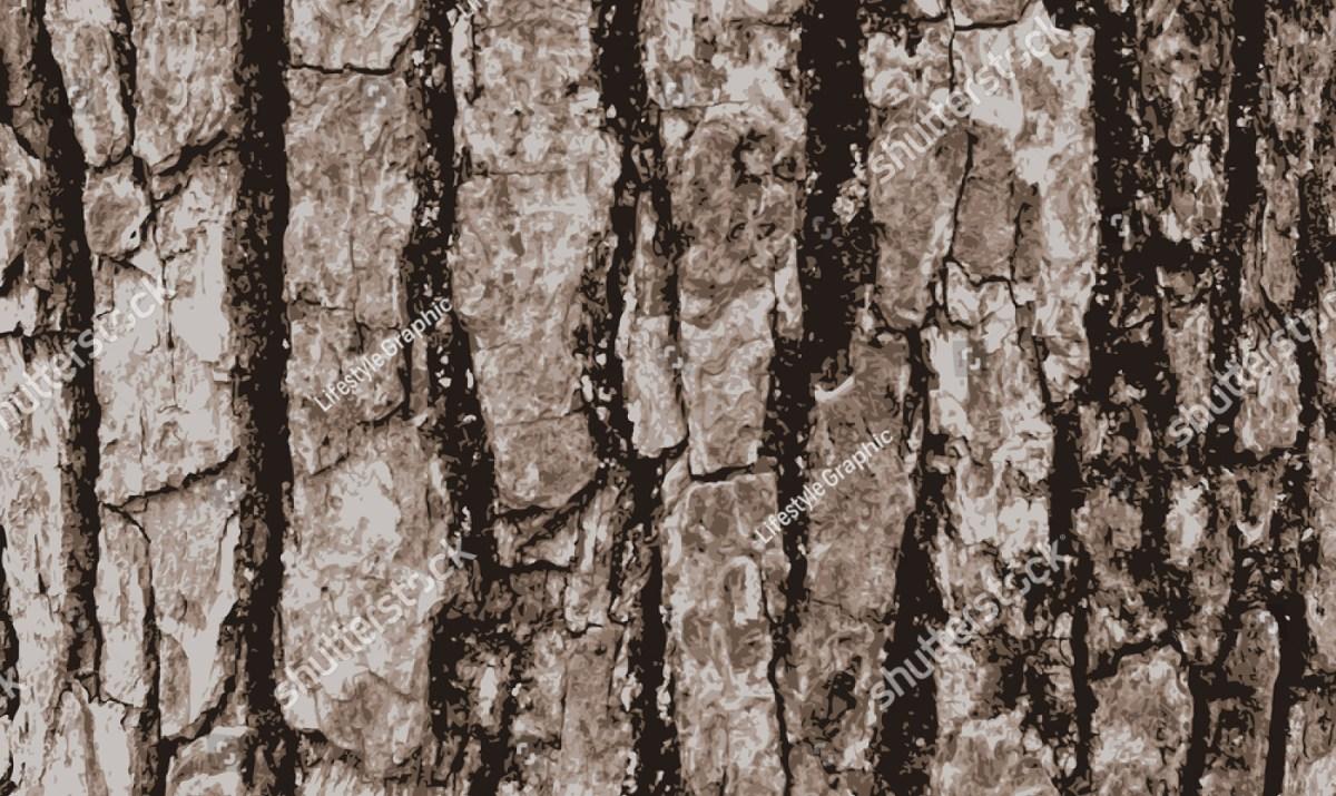 1200x715 Wood Bark Illustration Wooden Thing