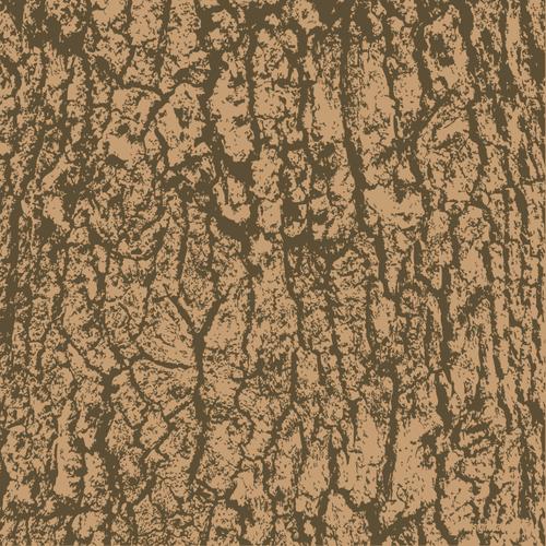 500x500 Buy Vector Tree Bark Wood Surface Pattern Royalty Free Vectors