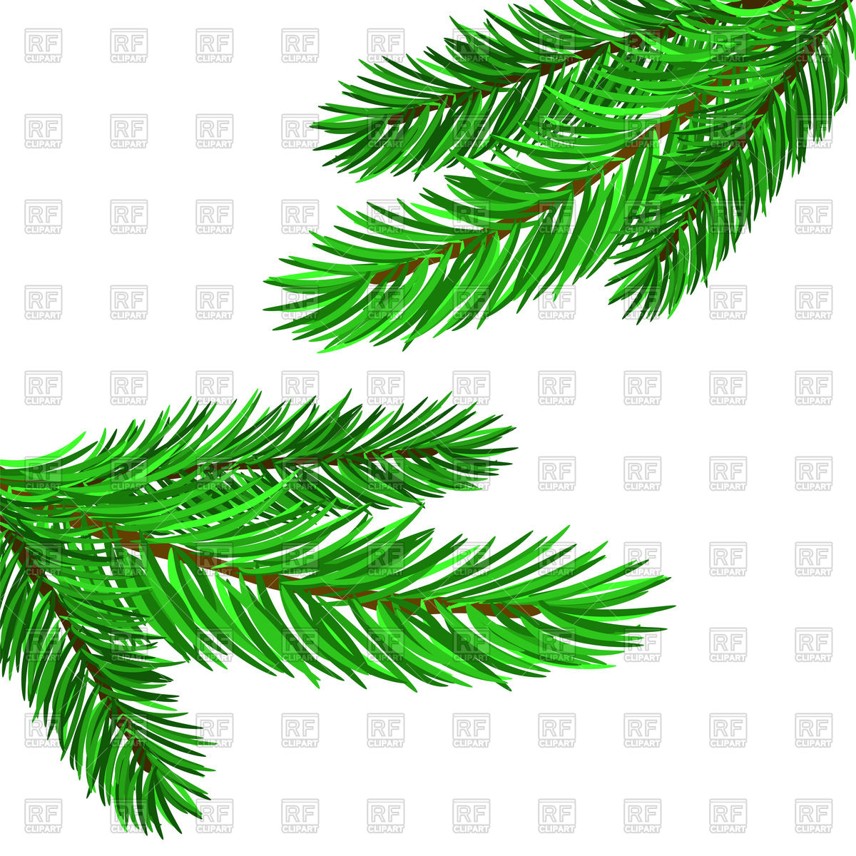 1200x1200 Fir Tree Branches Vector Image Vector Artwork Of Plants And