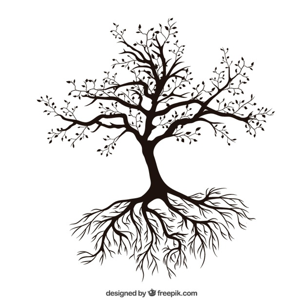 626x626 Tree Branch Vectors, Photos And Psd Files Free Download