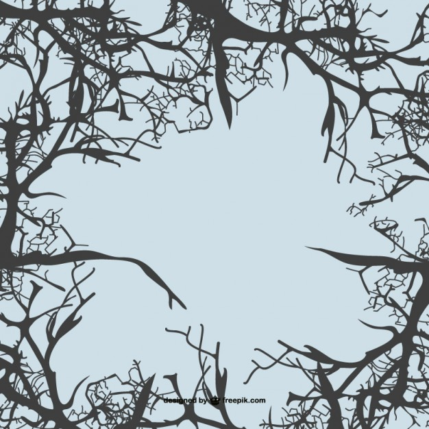 626x626 Tree Branches Vector Background Vector Free Vector Download In