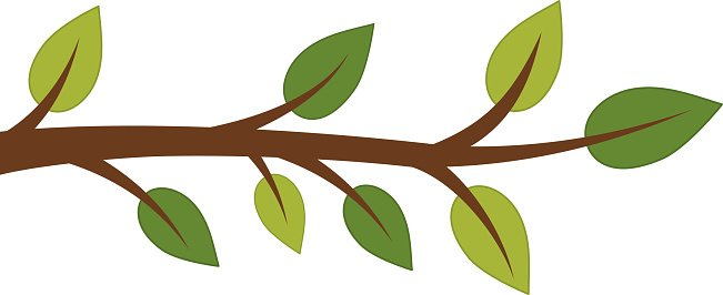 651x266 Vector Tree Branch Premium Clipart