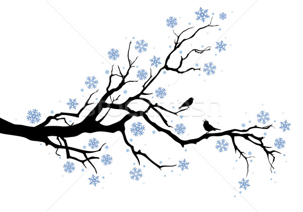 600x420 Winter Tree Branch Vector Illustration Beaubelle ( 471350