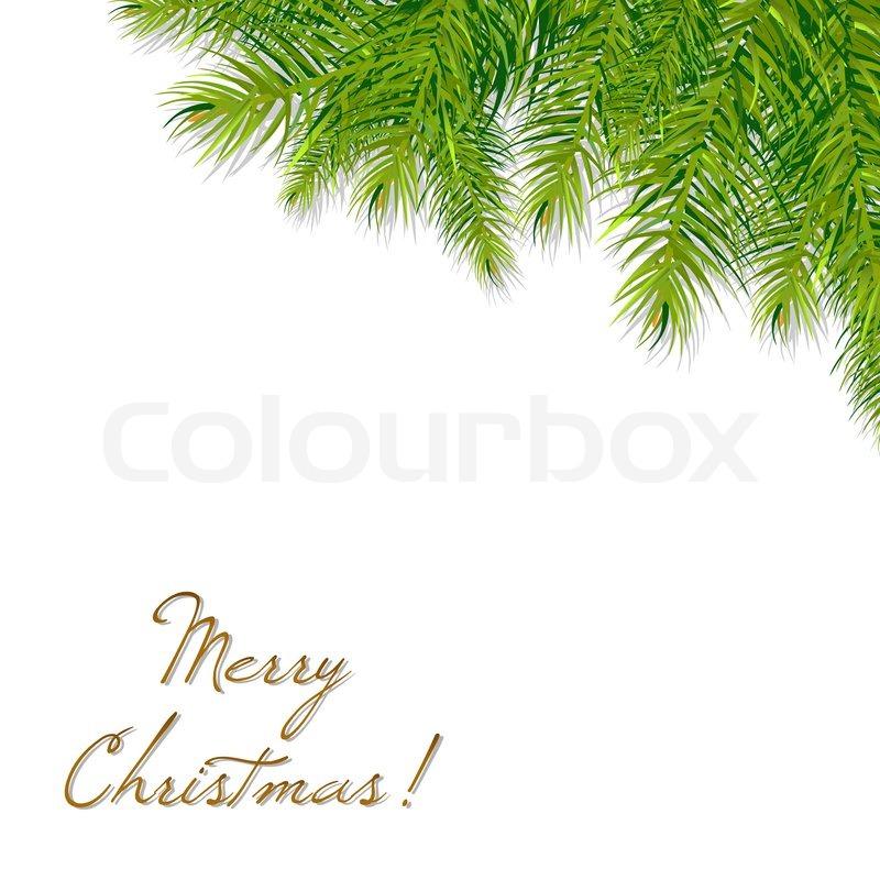 800x800 Christmas Tree Branch, Vector Illustration Stock Vector Colourbox